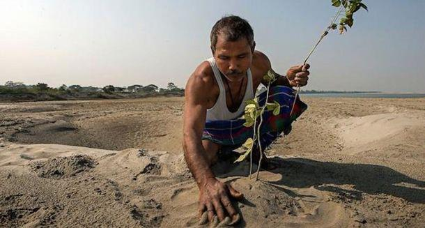 Когда он посадил бамбук в пустыне, его посчитали сумасшедшим! Через 37 лет его имя знали все...