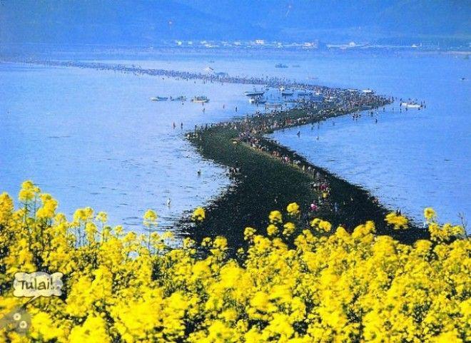 Библейское чудо в Корее — два раза в году море расступается и тогда...