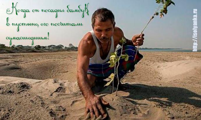 Когда он посадил бамбук в пустыне, его посчитали сумасшедшим! Через 37 лет его имя знали все...   1