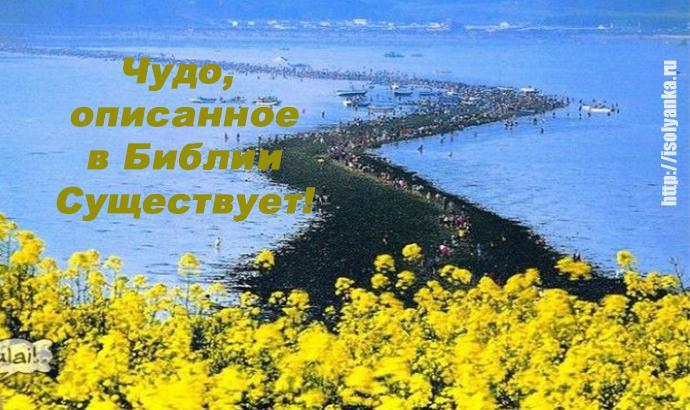 Библейское чудо в Корее — два раза в году море расступается и тогда...   1