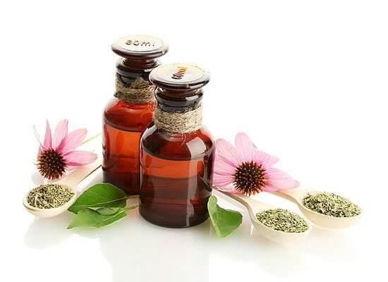 Цветок здоровья, который поможет и взрослым и детям!