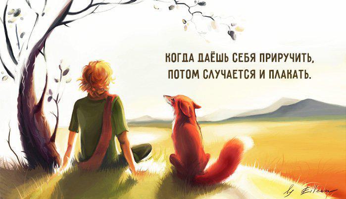 """Лучшие цитаты из книги """"Маленький принц""""!"""