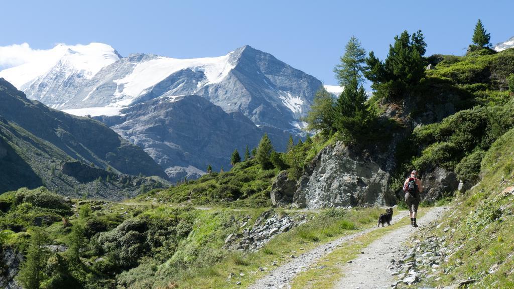 Щвейцарская деревня приглашает на постоянное место жительства желающих и платит за это... $70 000! | 4
