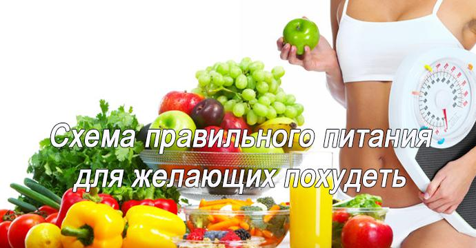 Схема правильного питания, для желающих сбросить вес!