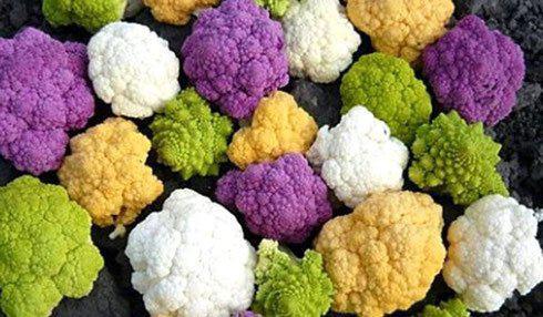 Готовим цветную капусту правильно: не еда, а сплошная польза!