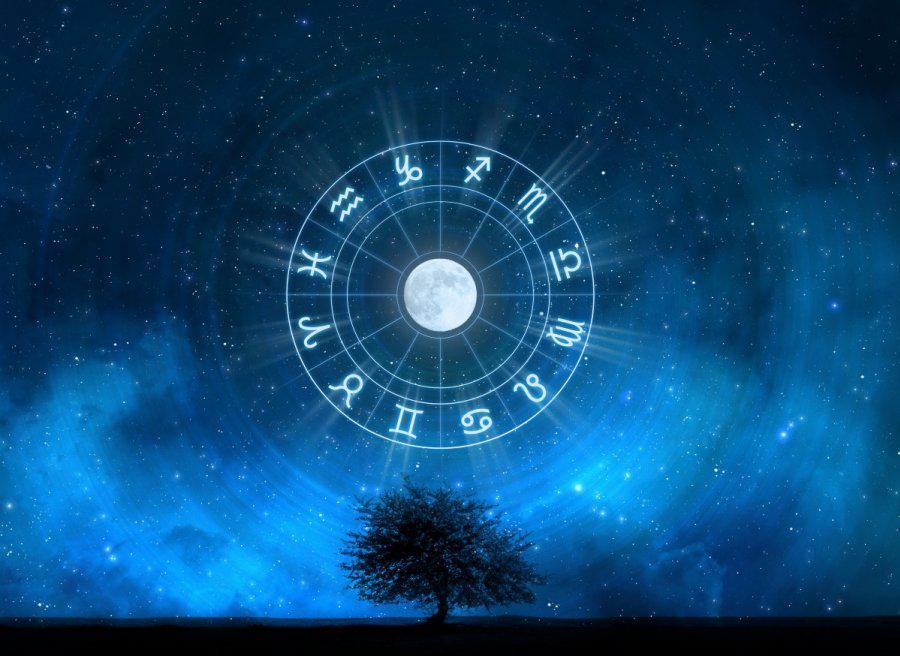 Какие знаки Зодиака любят одиночество, а какие его боятся?