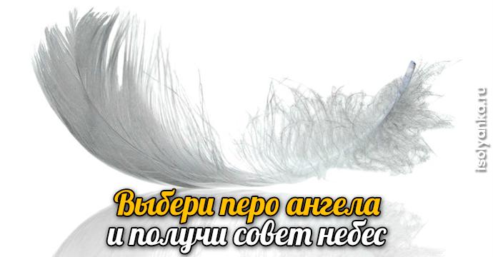 Выбери перо ангела и получи совет небес | 22