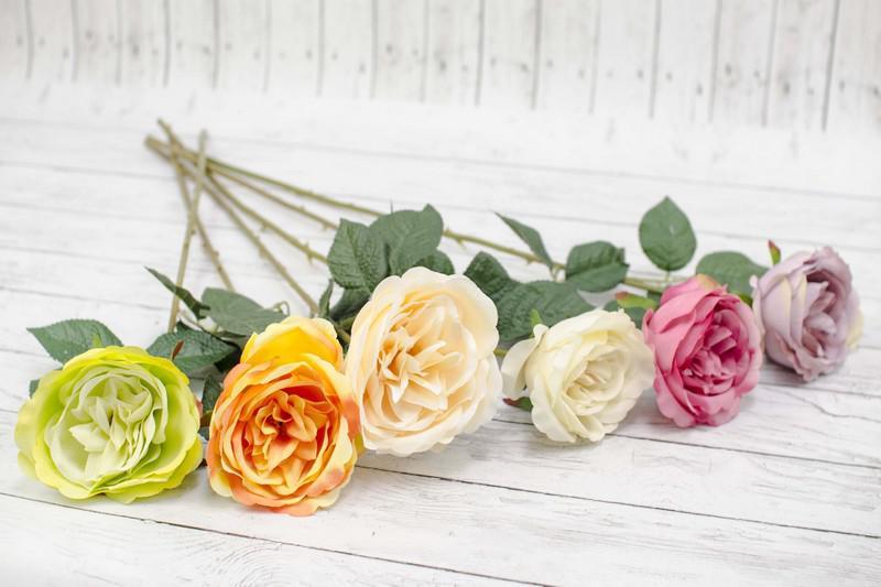 Розы в подарок   2