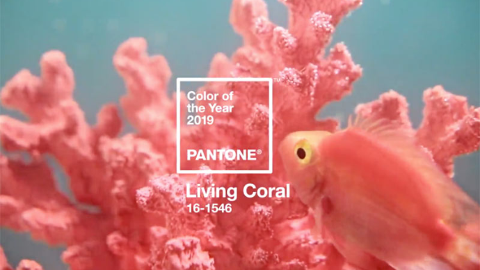 Главный цвет 2019 года: живой коралловый и 11 вещей этого оттенка которые должны быть в вашем гардеробе | 326
